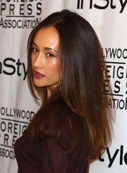 Maggie Q hit the InStyle HFPA party wearing her long hair straight and loose.