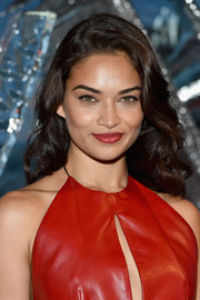 Shanina Shaik matched her lipstick to her red leather dress for total sexiness!