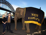 "Reese donned a pair of dark ""901"" denim leggings for posing with Robert Pattinson and an elephant!"