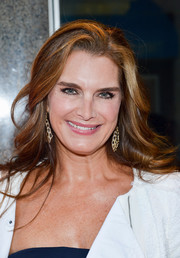 Brooke Shields attended the 'Whorl Inside a Loop' opening wearing chic feathered waves.