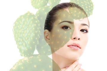 Beauty Products With Cactus