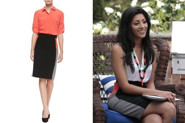 Reshma Shetty's Colorblock Pencil Skirt on 'Royal Pains'