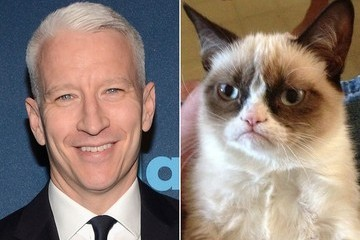 WHEN CUTE WORLDS COLLIDE: Grumpy Cat Was on 'Anderson Cooper Live' [VIDEO]