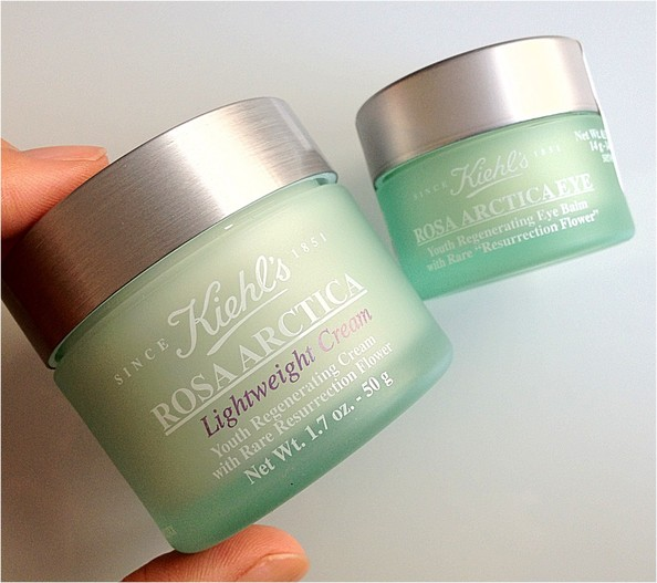 Beauty Obsession of the Day: Kiehl's New Rosa Arctica Lightweight Cream