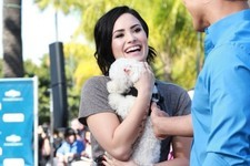 Demi Lovato Brings Her Dog Buddy to 'Extra'