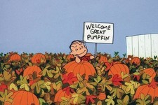 How Well Do You Remember 'It's the Great Pumpkin, Charlie Brown'?