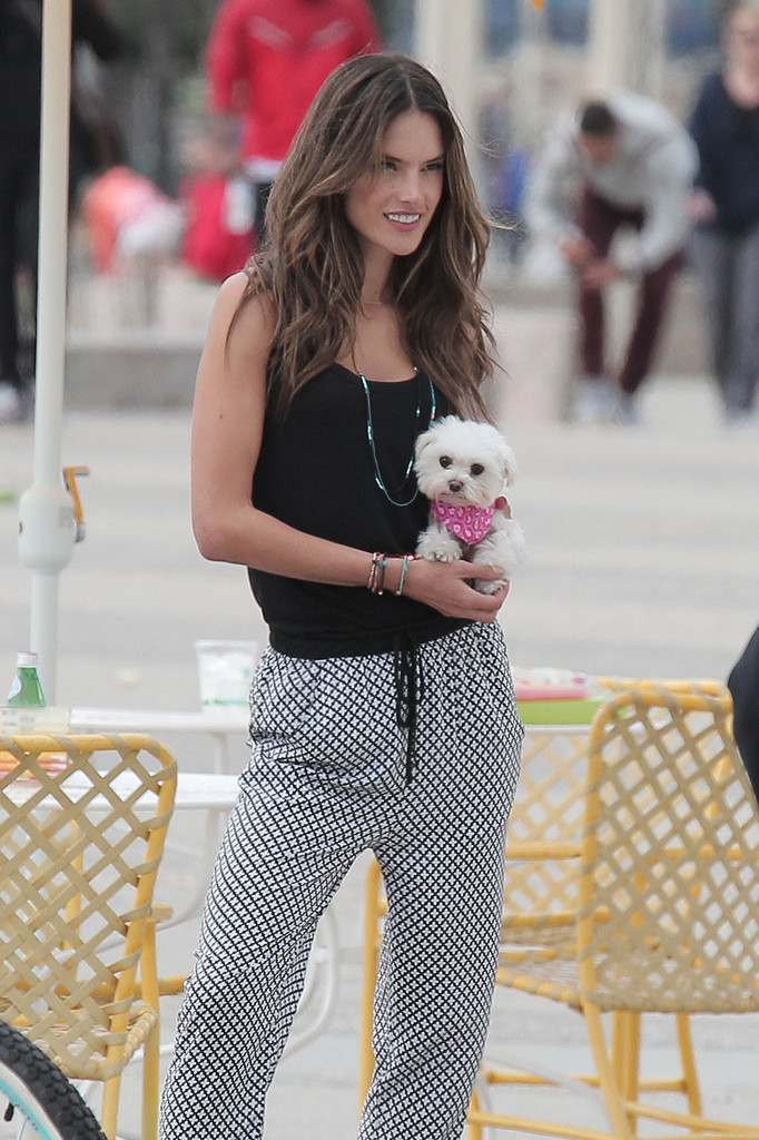 Alessandra Ambrosio does a photoshoot with her pet dog at Santa Monica boardwalk