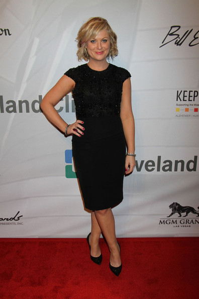 Amy Poehler Little Black Dress