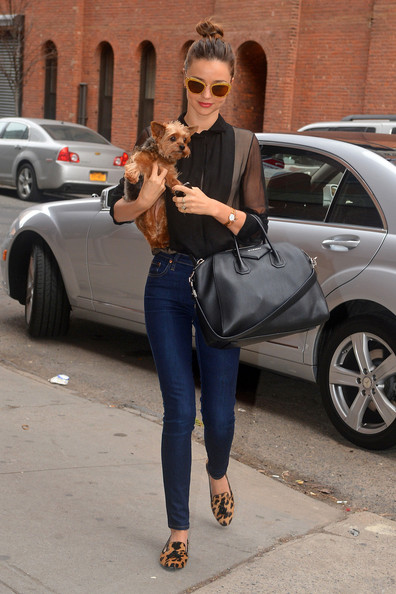 Miranda Kerr and Her Dog in NYC