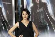 Sandrine Holt Evening Dress