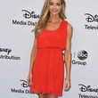 Denise Richards Cocktail Dress