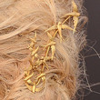 Elizabeth Banks Jewelry - Gold Brooch