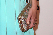 Hayden Panettiere Sequined Clutch