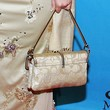 Jenna Haze Satin Purse