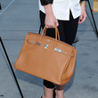 Lynn Collins Handbags - Leather Tote