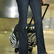 Rose McGowan Handbags - Rollerboard