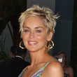 Sharon Stone Hair - Pixie