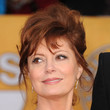 Susan Sarandon Hair - Messy Updo
