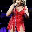 Tina Turner Clothes - Mini Dress