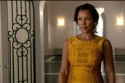 Vanessa Williams Day Dress