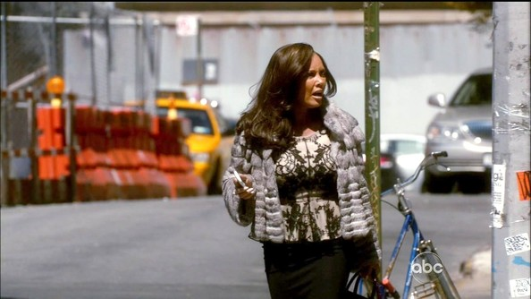 Vanessa Williams Fur Coat